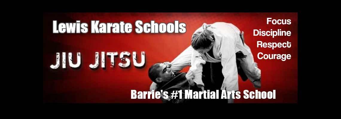 Karate and Jiu-Jitsu in Barrie: Classes for All Belt Levels